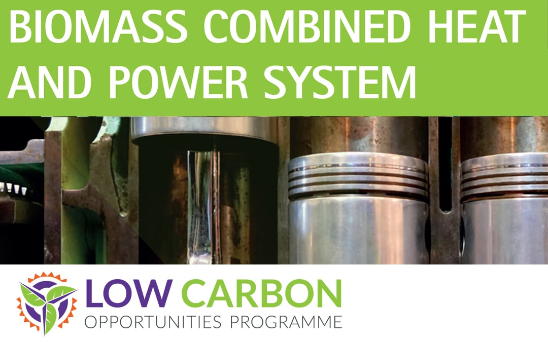LOCOP CASE STUDY: BIOMASS COMBINED HEAT AND POWER SYSTEM