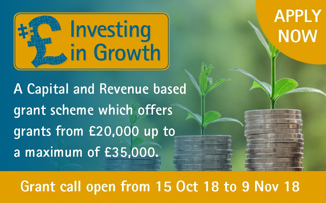 Expand your Business with the Investing in Growth Grant Fund Call