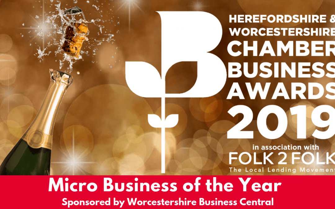 "Could You Be The ""Micro Business of the Year""?"