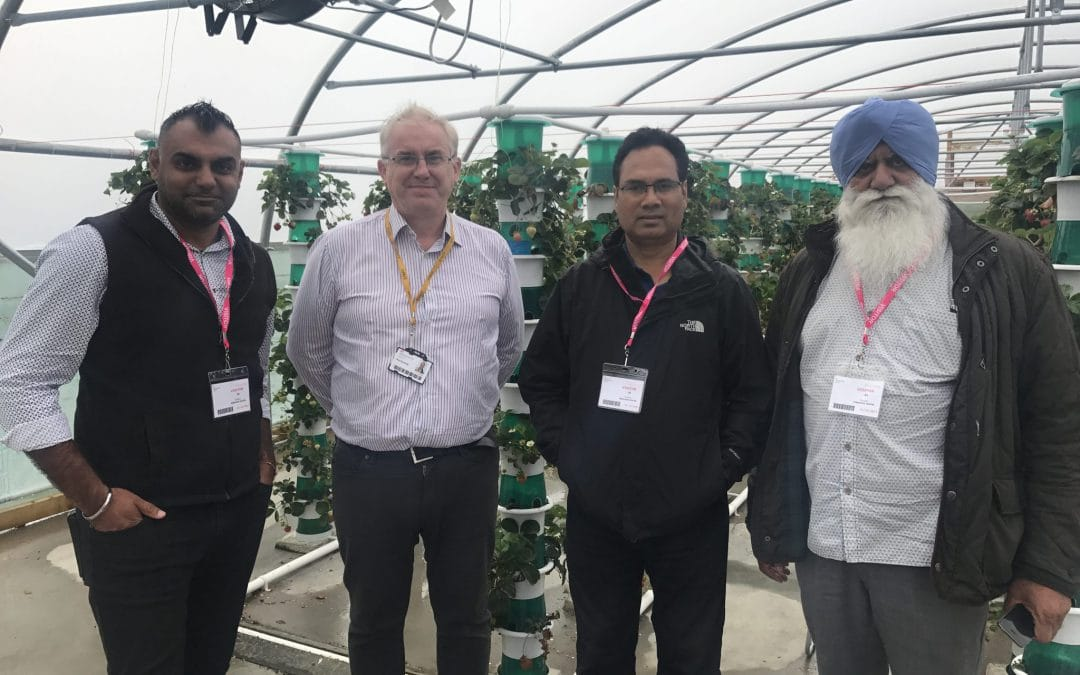 Innovative Agri-tech future for Vicarage Nurseries