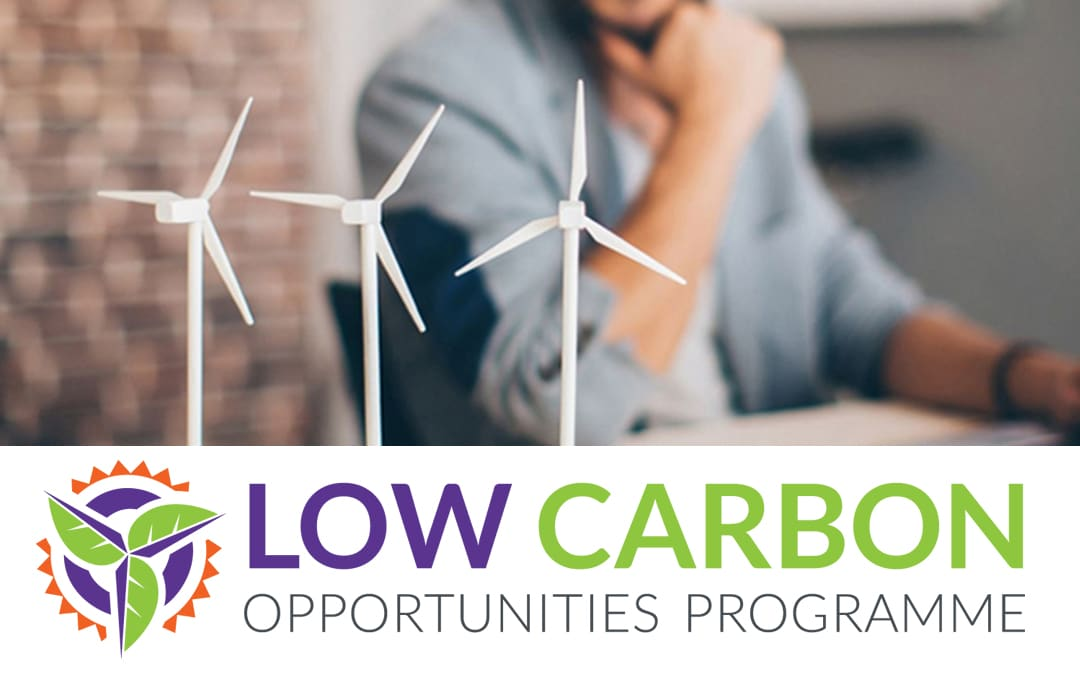 Low Carbon Opportunities Programme Extended for Three More Years