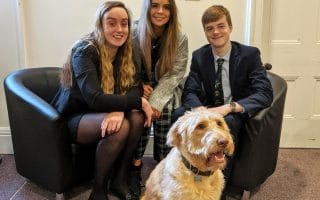 School Dog the Face of Kidderminster School's Governor Campaign